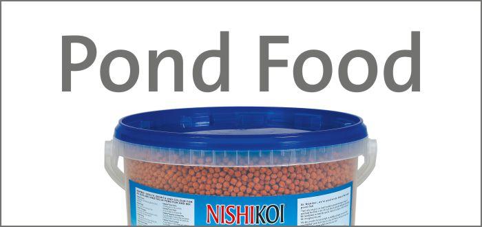pond-food.jpg